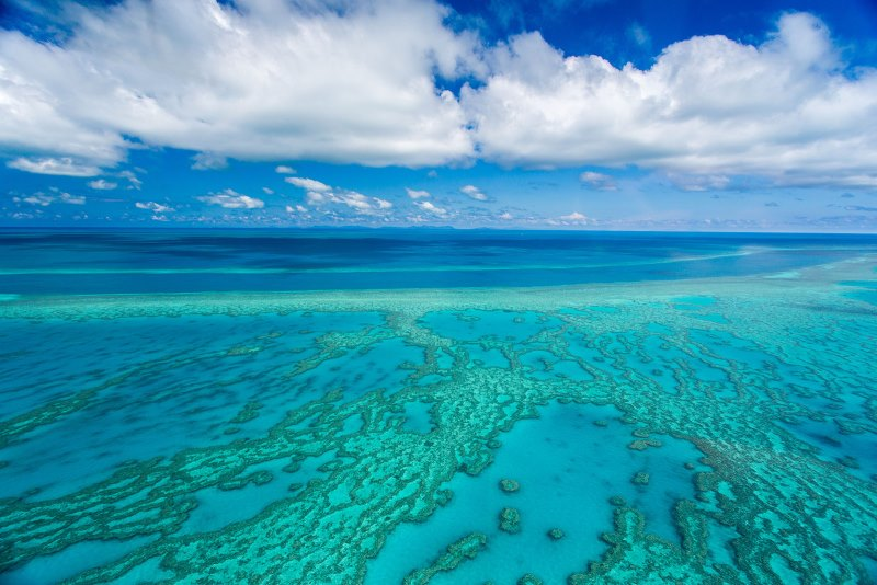great-barrier-reef_larissa-dening-coal-australia