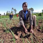 "South Africa's ""aspirational goal"" on adaptation"