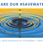 #SaveWater Twitterchat for National Water Week