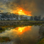 Experts warned about Garden Route fires