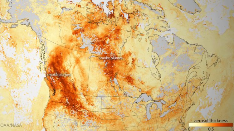 Fire and fury: Canada ablaze amid record heatwave