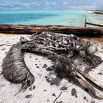 Plans to save Africa's polluted coastlines