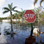 Raw sewage bubbling up in hurricane-battered Florida