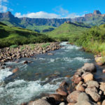 It's economically beneficial for SA to protect its natural capital