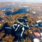 Tide of plastic waste discovered off Caribbean coast