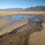 Cape Town water crisis: heading for ecological suicide?