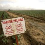 Leading pesticide destroys healthy microbes in humans and soil