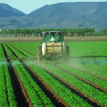 How to stop pesticide spraying in your area