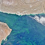 Study reveals massive 'dead zone' in the Arabian Sea