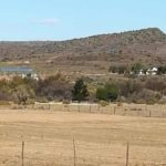 Public asked for help as Ladismith water shortage hits local farmers