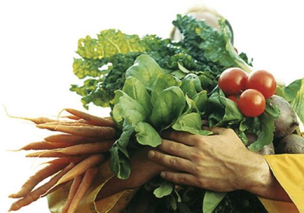 organic-food-is-still-tops