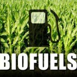stellenbosch-biofuels-company-brings-usa-technology-to-sa