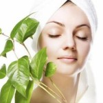 eco-cosmetics-save-the-earth-and-your-health