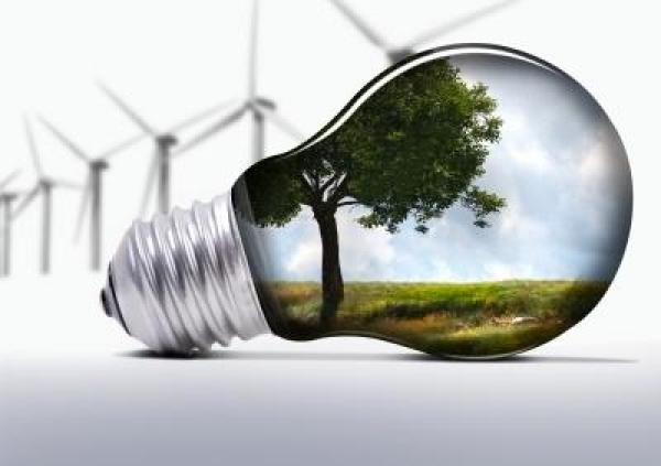 sa-companies-to-be-penalised-for-eco-non-compliance