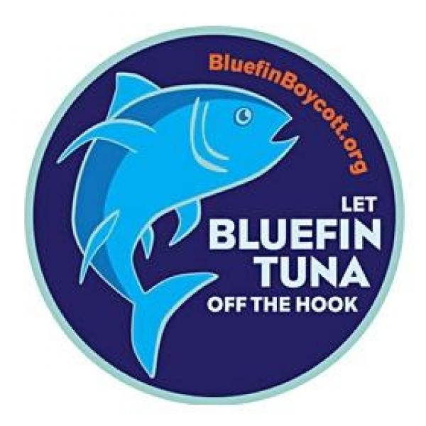 help-save-tuna-from-extinction
