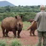 help-stop-the-mass-extinction
