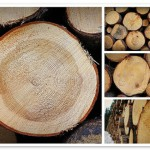 wood-biofuel-could-be-competitive-by-2020