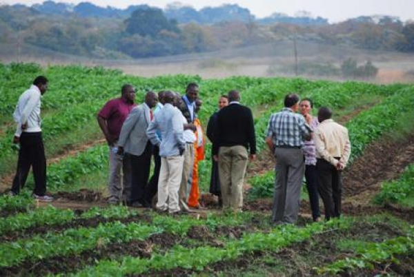 increased-support-for-organic-farmers