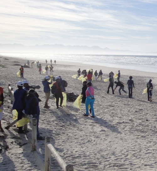 world oceans day - beach clean-up -1