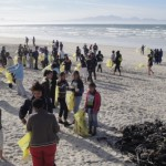 world's-biggest-volunteer-effort-for-ocean-health