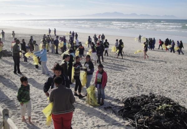 world's-biggest-volunteer-effort-for-ocean-health