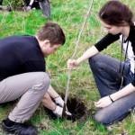 plant-a-tree-campaign-reaches-a-new-milestone
