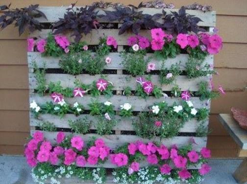 pallet gardens2