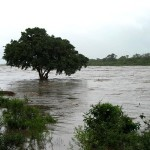 reality-of-climate-change-in-southern-africa