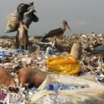 fast-food-worsens-ghg-emissions