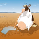 are-cows-drinking-australia-dry?