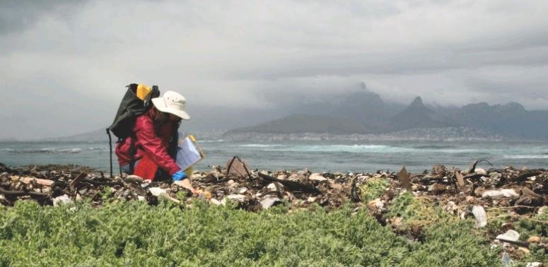 2013 International Coastal Clean-Up -2