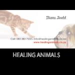 healing-animals