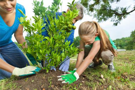 mom-planting-tree-with-kids