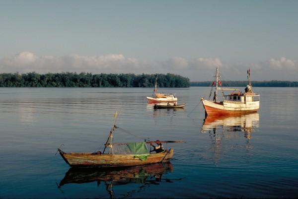 world fish migration day amazon 5 fishermen
