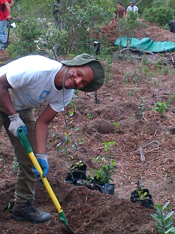 greenpop reforestation2