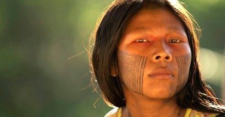 Amazon indigenous deforestation petition