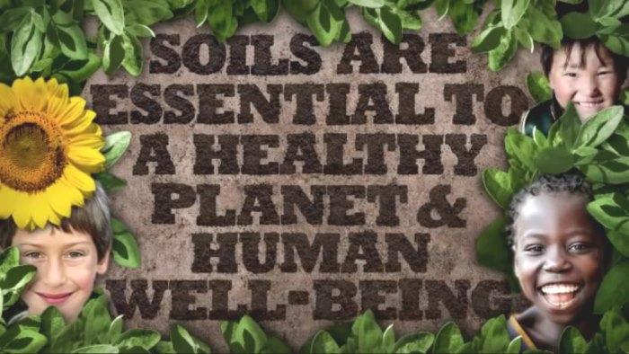 international year of soils 2015 -2