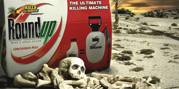 roundup picket builders warehouse south africa spraying herbicide monsanto2